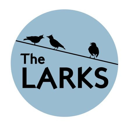 The Larks with Hireaband